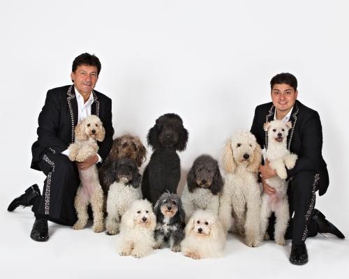 olate-dogs-1