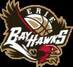 erie-bayhawks-logo-BE27CFFCBF-seeklogo.com